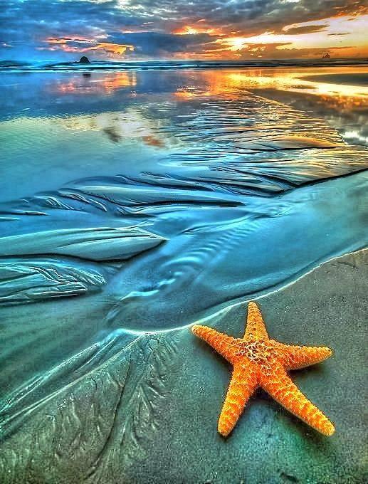بالصور صور عن البحر , اجمل واروع صور البحار 5720 7