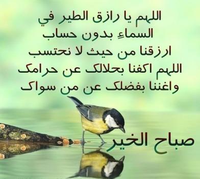 بالصور كلمات عن الصباح قصيره , اجمل كلمات الصباح 5782 5
