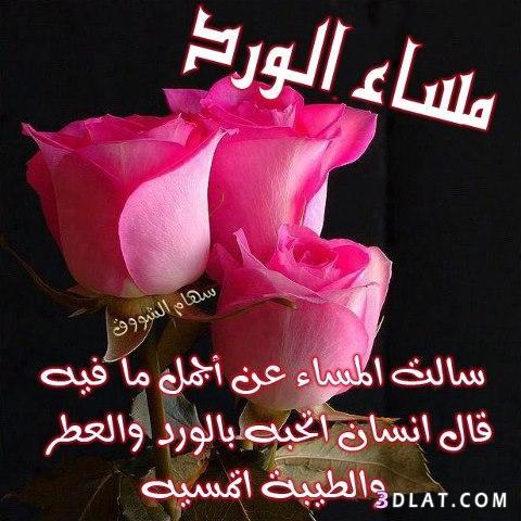 بالصور شعر مساء الخير , اجمل اشعار مساء الخير 6237