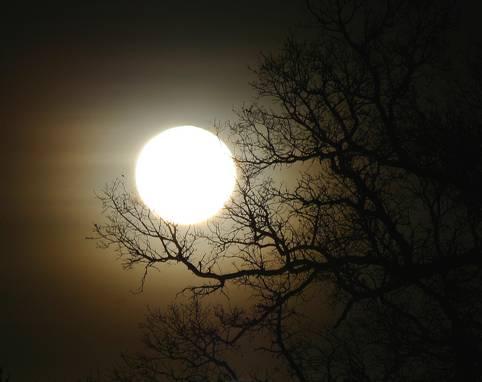 بالصور اجمل صور للقمر , اروع صور جميله و رومانسيه للقمر 4395 4