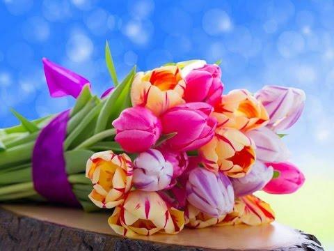 بالصور صور اجمل الورود , صور ورود روعه 1280 14