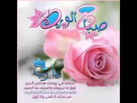 صوره صباح الورد للورد , اجمل صور صباح الورد