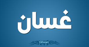 صوره معنى اسم غسان , معاني الاسماء غسان
