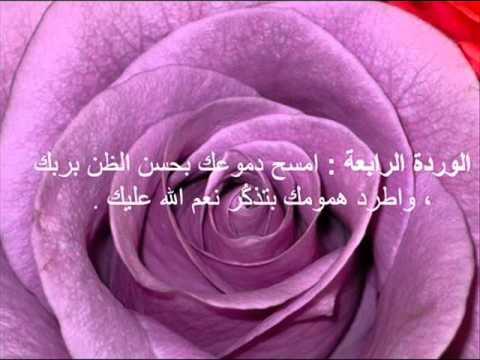 صور حكم عن الورد , اجمل الكلمات عن الورد