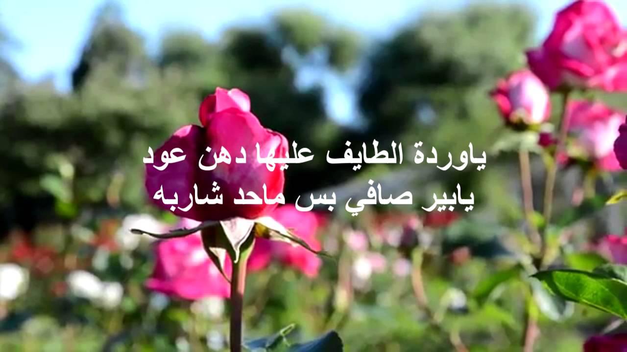بالصور حكم عن الورد , اجمل الكلمات عن الورد 2437 10