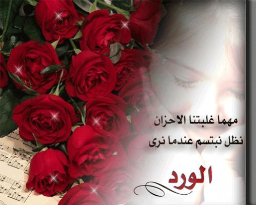 بالصور حكم عن الورد , اجمل الكلمات عن الورد 2437 2