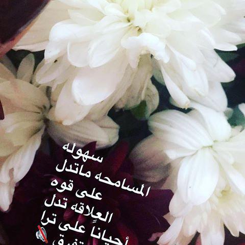 بالصور حكم عن الورد , اجمل الكلمات عن الورد 2437 3