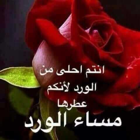 بالصور حكم عن الورد , اجمل الكلمات عن الورد 2437 5