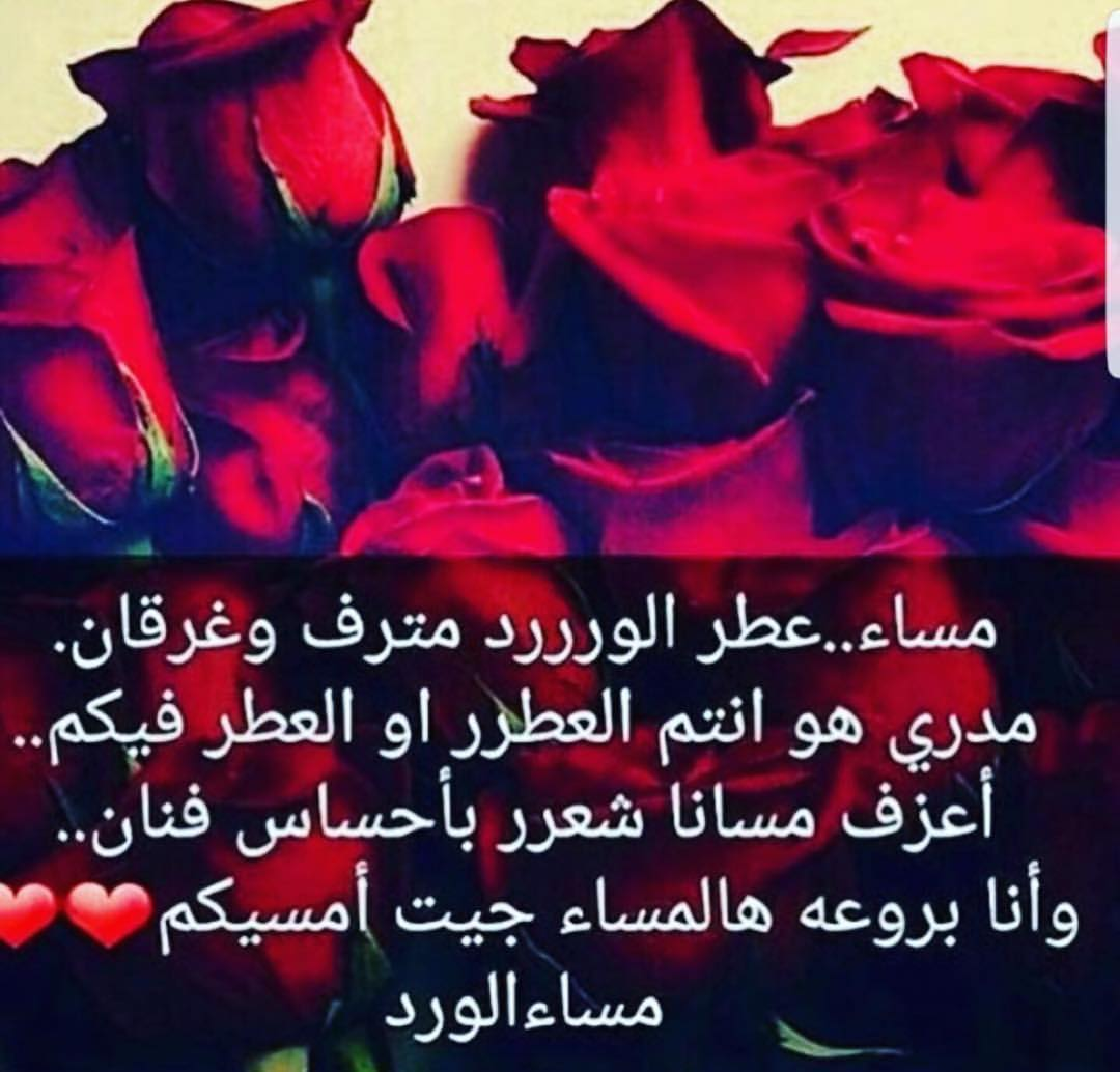 بالصور حكم عن الورد , اجمل الكلمات عن الورد 2437 6
