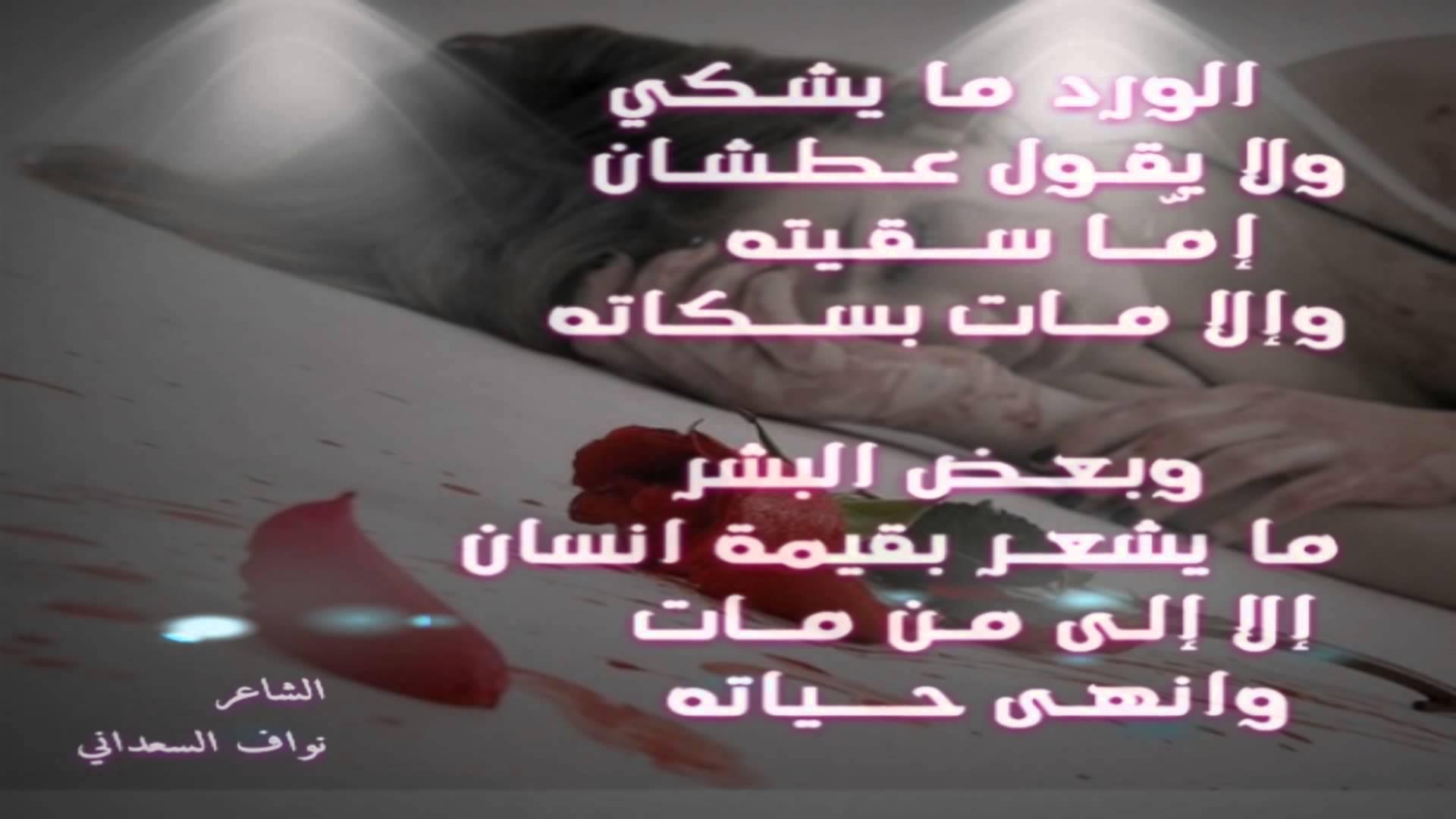 بالصور حكم عن الورد , اجمل الكلمات عن الورد 2437 8