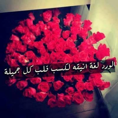 بالصور حكم عن الورد , اجمل الكلمات عن الورد 2437