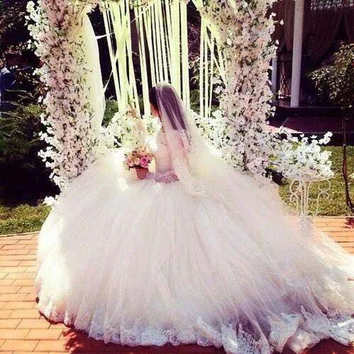 بالصور خلفيات عروس , احدث خلفيات للعروس 2491 5