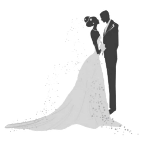 بالصور خلفيات عروس , احدث خلفيات للعروس 2491 6