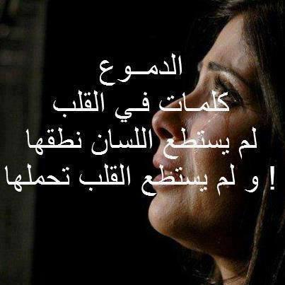 صورة شعر عتاب صديق , اجمل ابيات الشعر ي لوم الصديق 2967 4