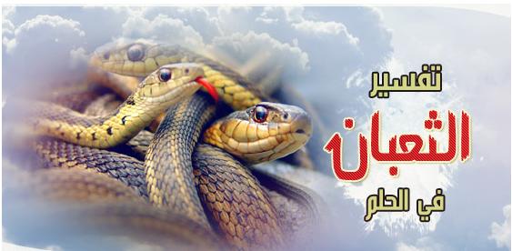 صورة رؤية الثعبان في المنام وقتله , تفسير ظهور الثعبان في المنام