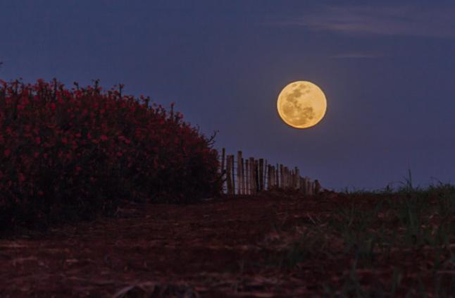 بالصور صور عن القمر , اجمل خلفيات للقمر المنير 3714 8