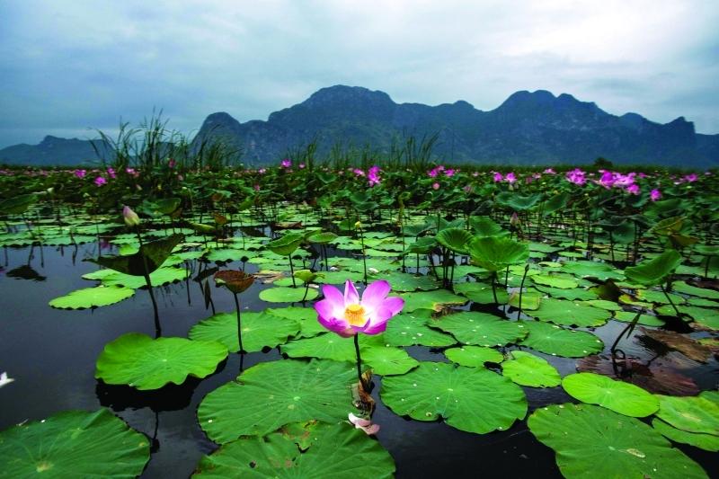 بالصور جمال الطبيعة , اروع مناظر طبيعية 3725 4