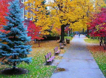 بالصور جمال الطبيعة , اروع مناظر طبيعية 3725 6