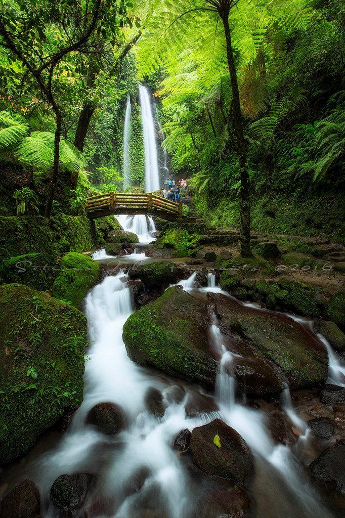 بالصور صور خلفيات طبيعيه , اروع اشكال الطبيعة الجذابة 3755 1