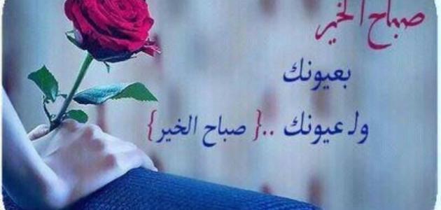 بالصور اجمل كلام يقال للحبيبة , اروع العبارات التي تقال للحبيبة 3817 2