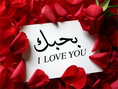 صوره حب وعشق وغرام , خلفيات بها اجمل كلام حب وغرام