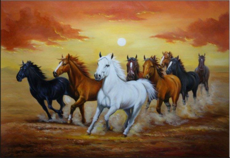 بالصور حصان عربي , مواصفات الخيل العربي الاصيل 3874 4