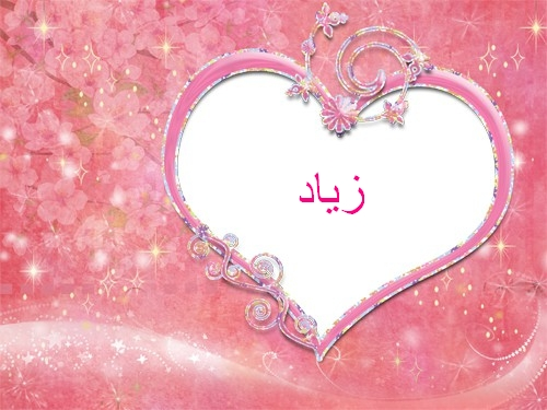 بالصور معنى اسم زياد , مواصفات اسم زياد 3880 2