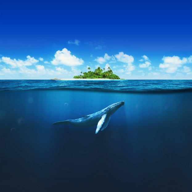 بالصور خلفيات بحر , خلفيات بحر في اوقات مختلفة 3997 4