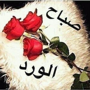 صور صباح الخير حبيبي احدث و اجمل صور تحية الصباح للعشاق مساء الورد