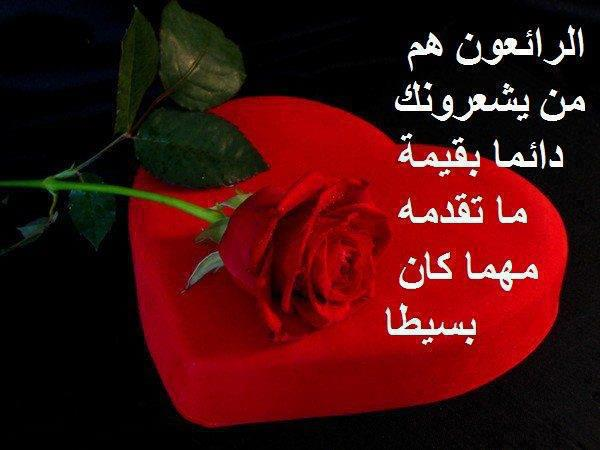 صور ورود مكتوب عليها عبارات جميله , اروع العبارات المكتوبة على الورد فى صور جميلة