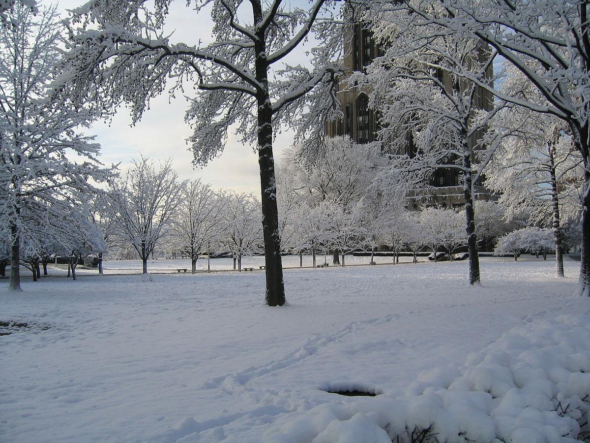 صورة كم باقي على الشتاء , متى يبدا فصل الشتاء