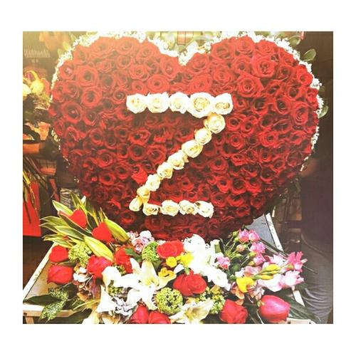 صورة صور حرف z , اروع صور لحرف Z لعيونكم