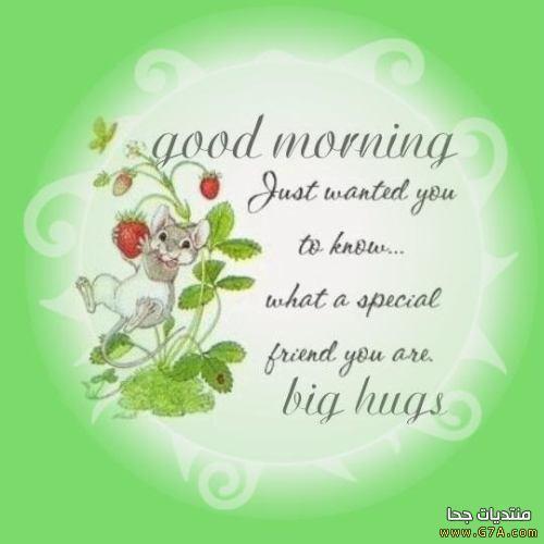 بالصور صور صباحيه للحبيب , افضل صور صباح الخير 4966 10