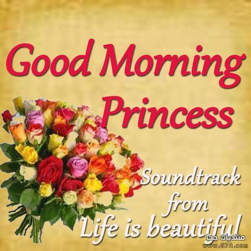 بالصور صور صباحيه للحبيب , افضل صور صباح الخير 4966 11