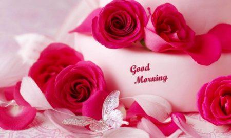 بالصور صور صباحيه للحبيب , افضل صور صباح الخير 4966 14