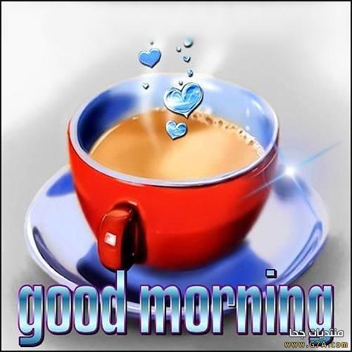 بالصور صور صباحيه للحبيب , افضل صور صباح الخير 4966 9