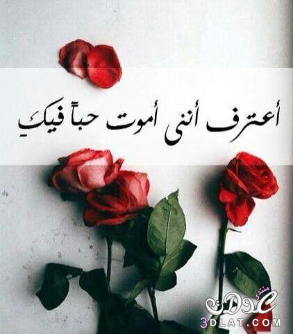 بالصور رمزيات حبيبي , خلفيات حب روعه 5041 1