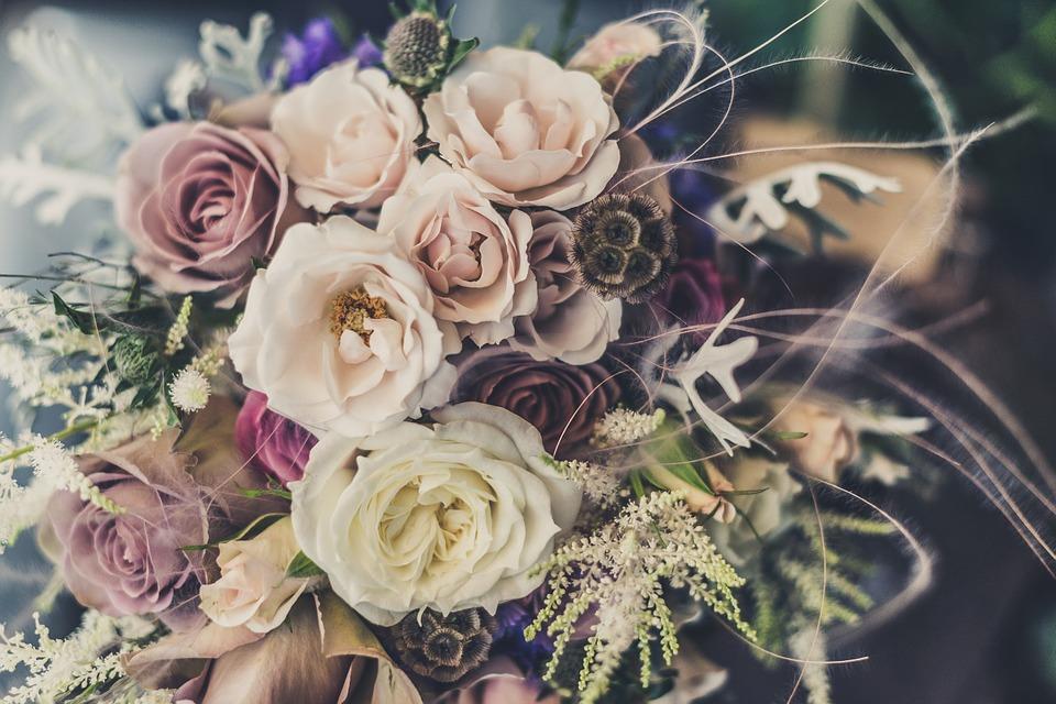 صوره صور ورد صور ورد , خلفيات زهور و ورد