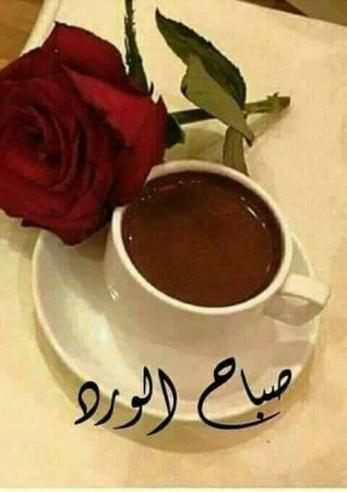 بالصور صباح نور , صور صباح الفل 5082 10