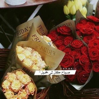 بالصور كلمات جميلة عن الصباح , صور صباح الخير 5091 11
