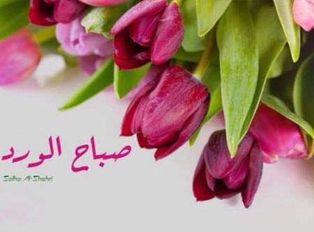 بالصور كلمات جميلة عن الصباح , صور صباح الخير 5091 12