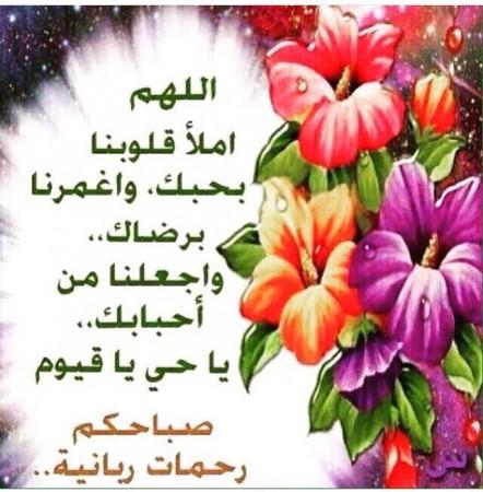 بالصور كلمات جميلة عن الصباح , صور صباح الخير 5091 13