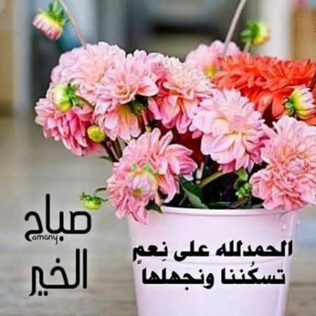 بالصور كلمات جميلة عن الصباح , صور صباح الخير 5091 3