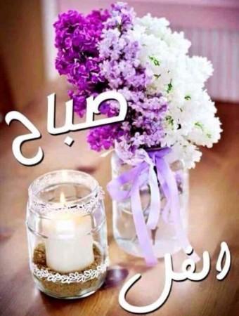 بالصور كلمات جميلة عن الصباح , صور صباح الخير 5091 4