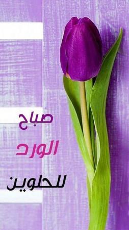 بالصور كلمات جميلة عن الصباح , صور صباح الخير 5091 7