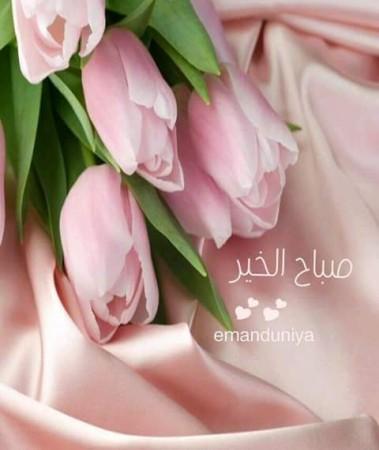 بالصور كلمات جميلة عن الصباح , صور صباح الخير 5091 9