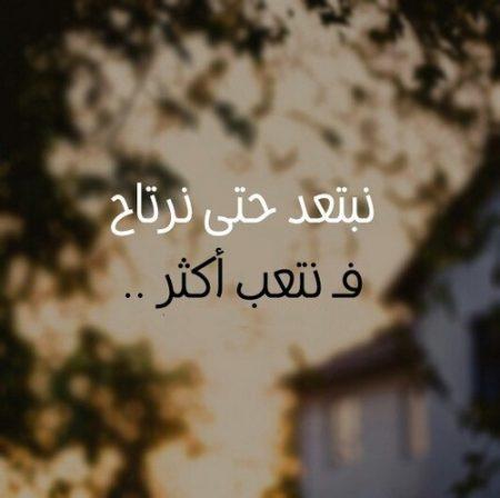 بالصور كلمات شوق للحبيب , احلي صور عن الشوق 5176 5