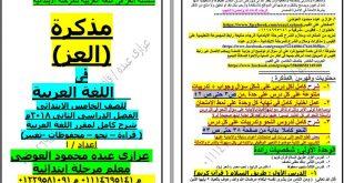 صوره معلومات عن اللغه العربيه ٖ طريقة شرح معلومات اللغة العربيه
