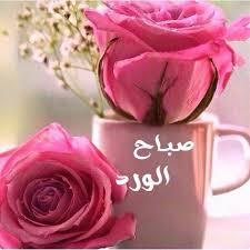 بالصور صباح الخير يا حبيبي , اجمل صباح الخير لاجمل حبيب 710 9