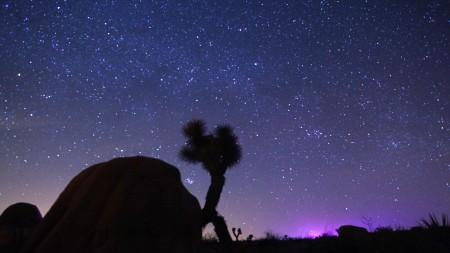 بالصور خلفيات نجوم , افضل صور للنجوم 5194 12